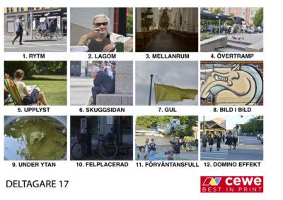 DELTAGARE 17