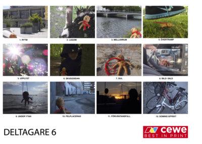 DELTAGARE 6